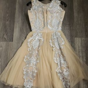 Chotronette Dresses - Silver Lace Cream Beige Tulle Dress by Chotronette